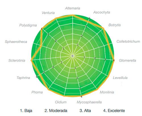 Eficacia Signum en cultivos hortofructícolas monilia en almendro