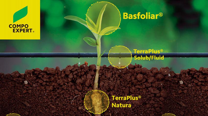 Gama Ecológico de Compo Expert- TerraPlus Fluid 3-5-5