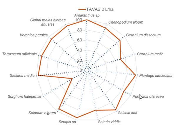 Eficacia de TAVAS en viña 01