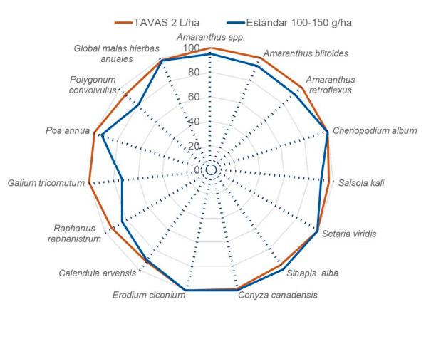 Eficacia TAVAS en viña 02