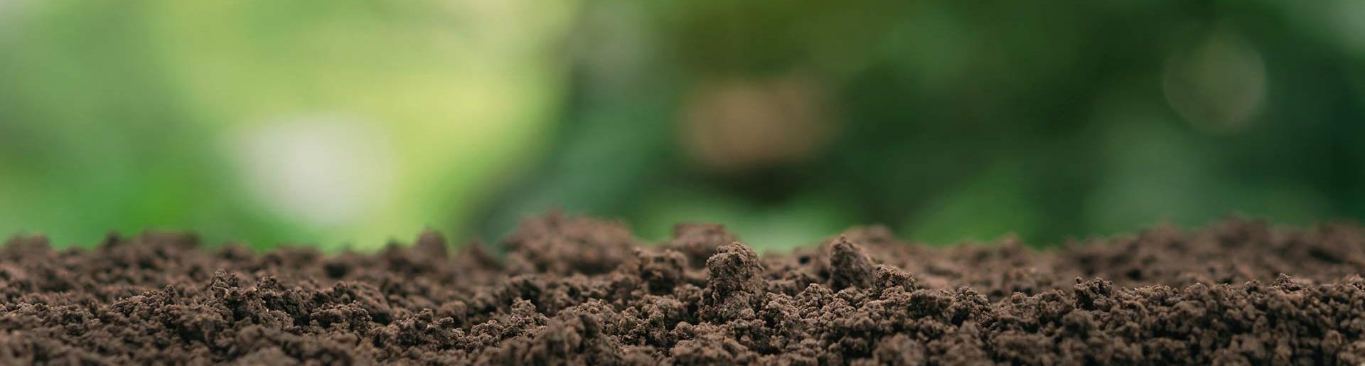 Desinfección del terreno en viñedo 2019