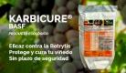 Karbicure, un biofungicida para el control de botritis sin plazo de seguridad