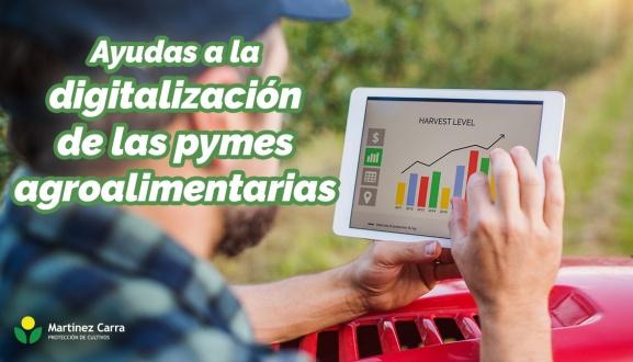 Ayudas económicas a la digitalización de las pymes agroalimentarias