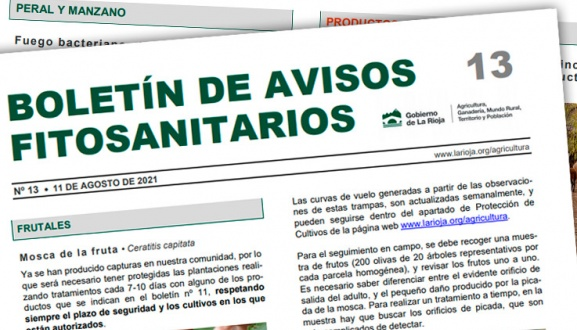 Boletín 13 de avisos fitosanitarios de La Rioja | 2021