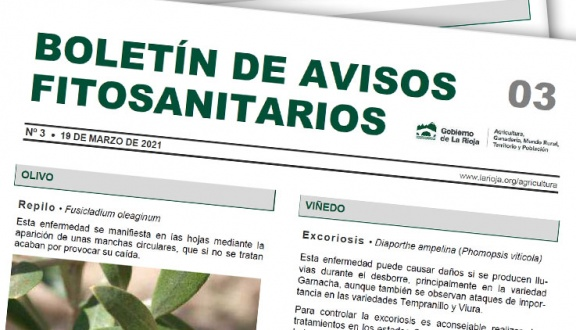 Boletín 3 de avisos fitosanitarios de La Rioja | 2021