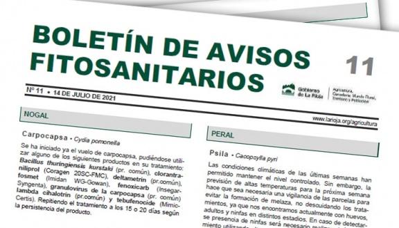 Boletín 11 de avisos fitosanitarios de La Rioja   2021