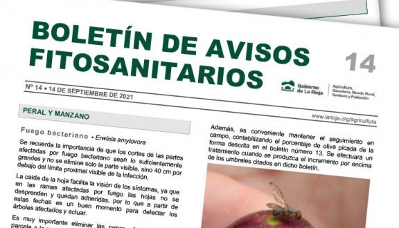 Boletín 14 de avisos fitosanitarios de La Rioja | 2021