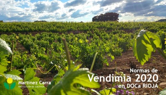 Normas de campaña para la vendimia 2020 en DOCa Rioja