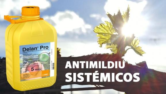 Presentación antimildiu sistémicos Delan Pro y Enervin Pro