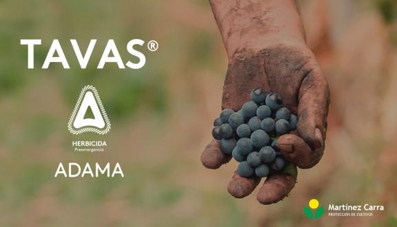 Herbicida Tavas de Adama para viñedo