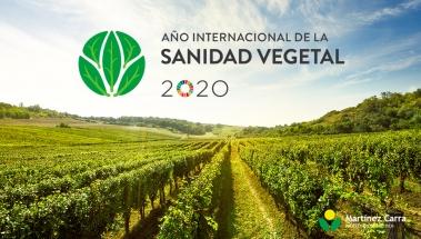 2020: Año internacional de la Sanidad Vegetal 2020.