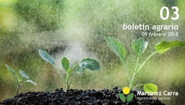 6 Ventajas de los abonos para agricultura ecológica