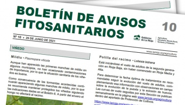 Boletín 10 de avisos fitosanitarios de La Rioja | 2021