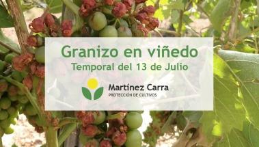 La tormenta del 13 de Julio en La Rioja