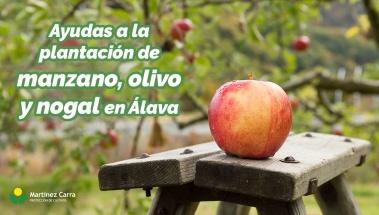 Ayudas económicas manzano, olivo y nogal