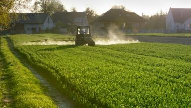 el herbicida glifosato no es cancerígeno