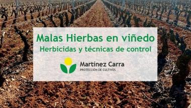 Control de Malas Hierbas en el Viñedo. Técnicas y Herbicidas.