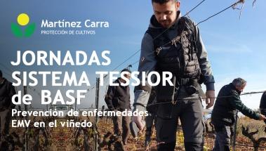 Jornadas prácticas del sistema Tessior de BASF en La Rioja y Rioja Alavesa