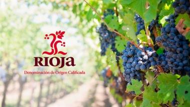 El Consejo Regulador DOCa Rioja aprueba las normas para la vendimia 2017