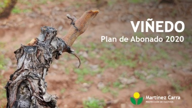 Plan de abonado de viñedo 2020