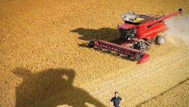 Priaxor Pack, de BASF, el Superfungicida para cereales