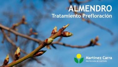 Tratamiento en Prefloración del Almendro para prevenir enfermedades
