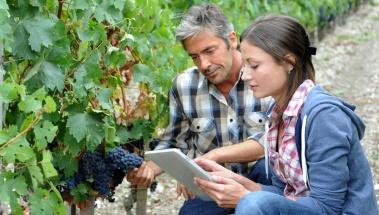 Herramientas y Apps de interés agrícola