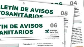 Boletín 4, 5 y 6 de avisos fitosanitarios del Gobierno de La Rioja