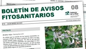 Boletín 08 de avisos fitosanitarios de La Rioja | 2019