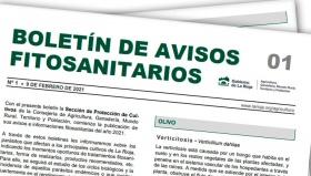 Boletín 1 de avisos fitosanitarios de La Rioja | 2021
