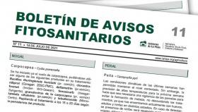 Boletín 11 de avisos fitosanitarios de La Rioja | 2021