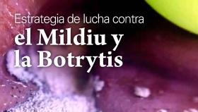 Jornada sobre el mildiu y la botrytis - 16 de Noviembre en Laguardia