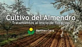 Cultivo del Almendro Riojano - Tratamientos al inicio de floración 2021